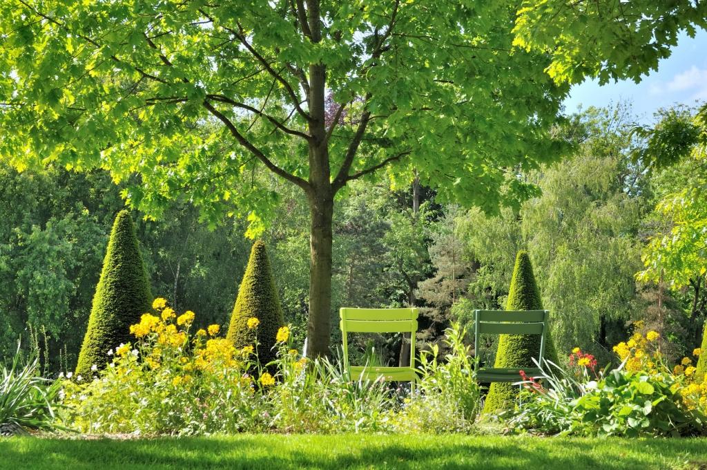 Aidlib entretien jardins espaces verts nettoyage locaux 94 for Jardin creation entretien