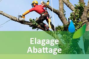 elagage-94-abattage-94-arbre-aidlib