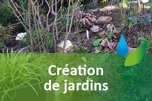 entretien-creation-de-jardins-plantations