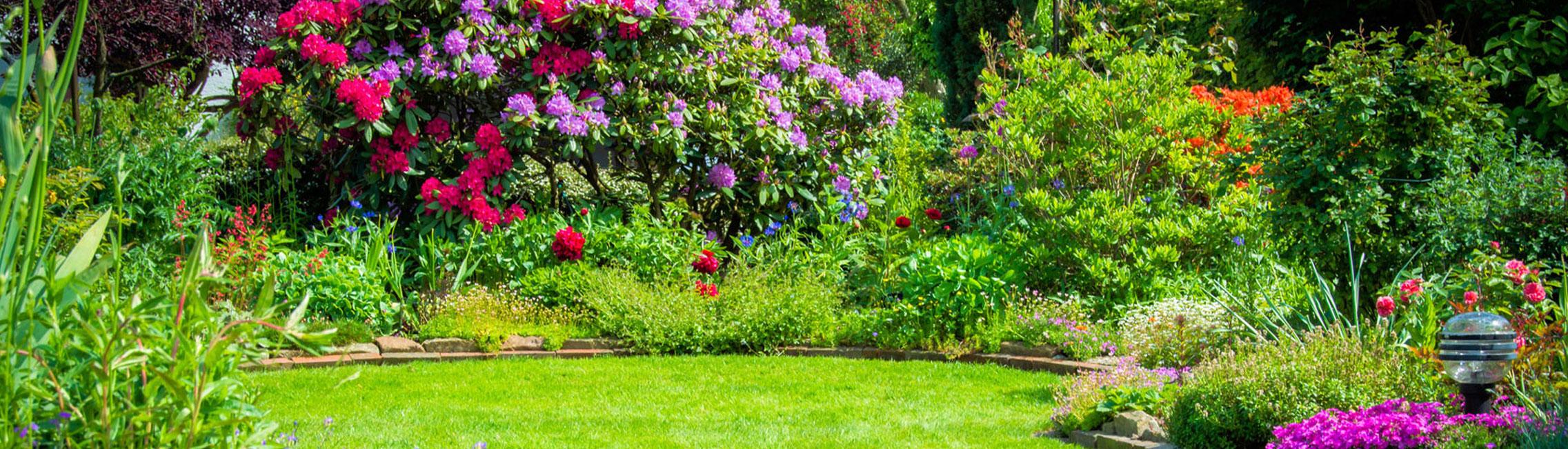 Aidlib entretien jardin cr ation jardins 94 lagage for Entretien jardin 92
