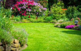 entretien pelouse creation jardin Aidlib multiservices 94