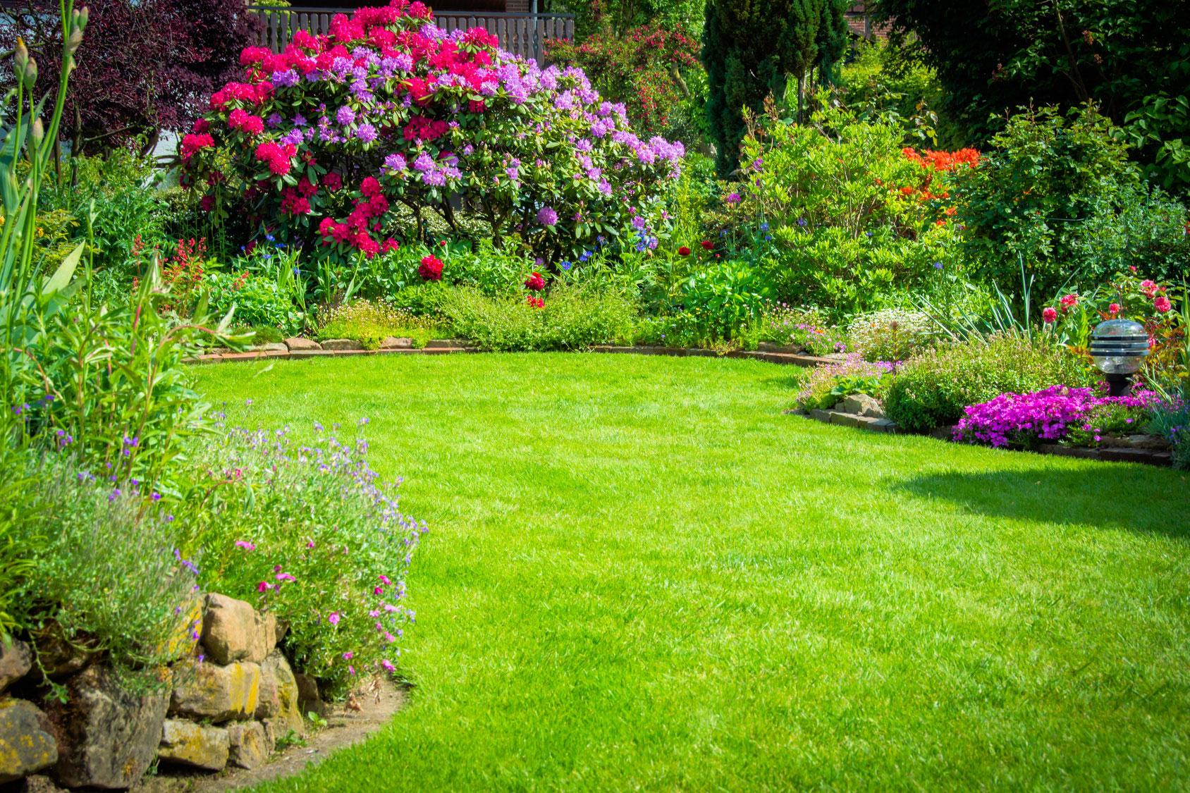 plantation gazon pelouse fleurs création jardins espaces verts aidlib multiservices