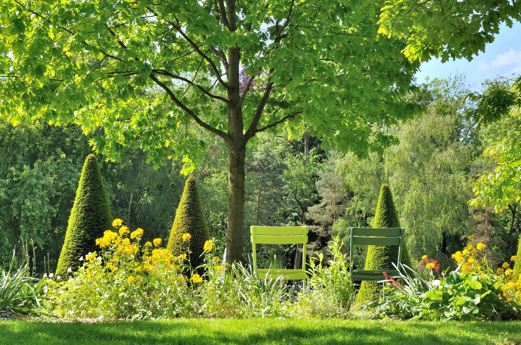 plantation création jardins espaces verts aidlib multiservices