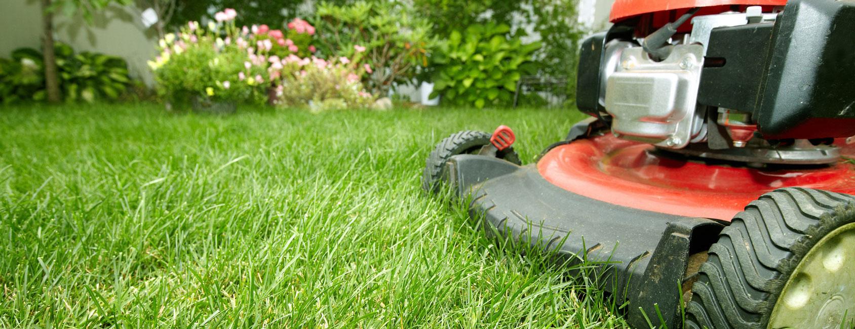 Service jardin 50% de réduction d\'impôt particuliers