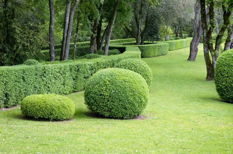 creation-jardin-francaise-aidlib-espaces-verts