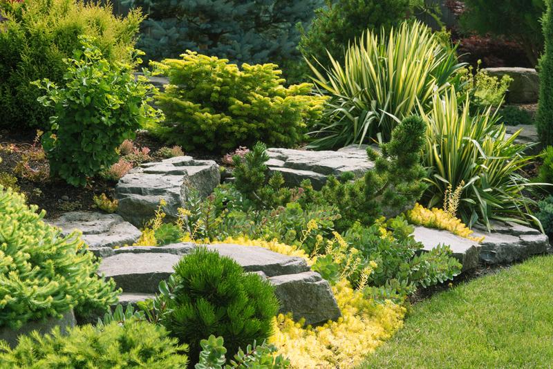creation-jardin-paysagiste-aidlib-espaces-verts