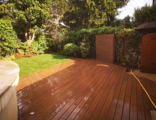 Aménagement terrasse et jardin à Saint-Maur-des-Fossés