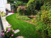 maison alfort chantier arriere du jardin finiAidlib jardinier paysagiste